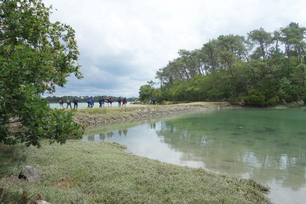 Roquerno Estuaire